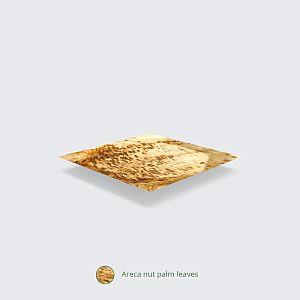 Palm leaf plate, rectangle, 254 mm, 25 pcs per pack