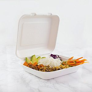 Bagasse lunch box, square, 203 mm, lightweight, 50 pcs per pack